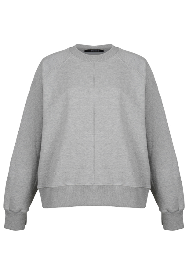 Sweatshirt - Gray